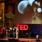 TED lecturer exploits African women + children