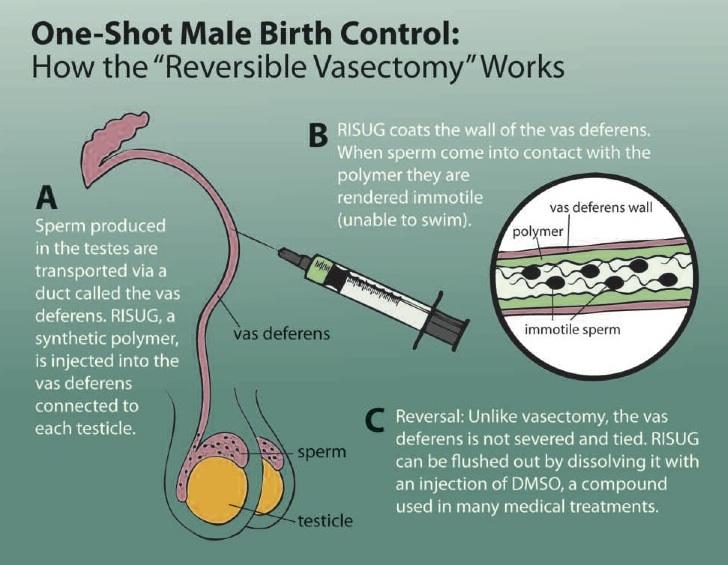 birth control men