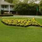 NEWSFLASH: Augusta National Opens Membership to Women