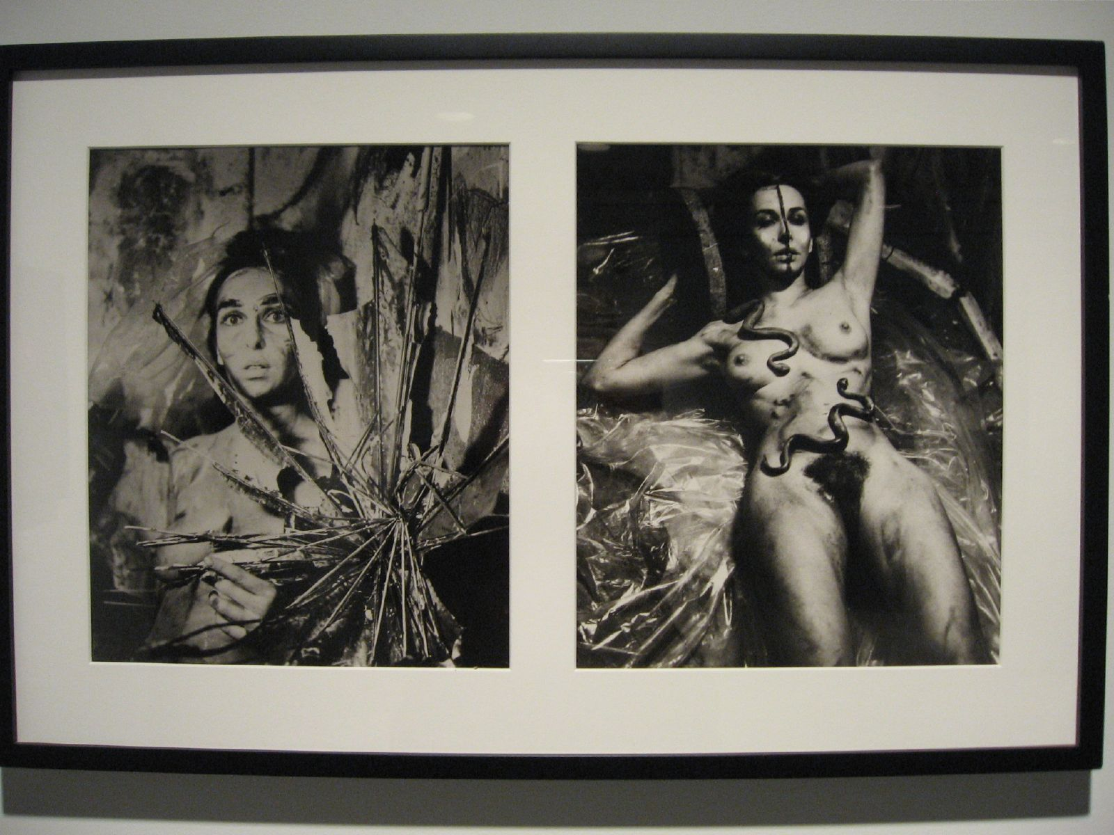 Feminist Artist Carolee Schneemann Looks Backward And Forward Gnmdvision Loss Flashcards Quizlet