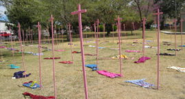 Femicide is a Pandemic of its Own
