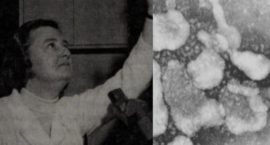 June Almeida: The Woman Who First Discovered Coronavirus in 1964