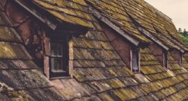 A Roof of One's Own