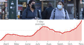 The Weekly Pulse_ U.S. Enters the _Most Deadly Phase of This Pandemic_