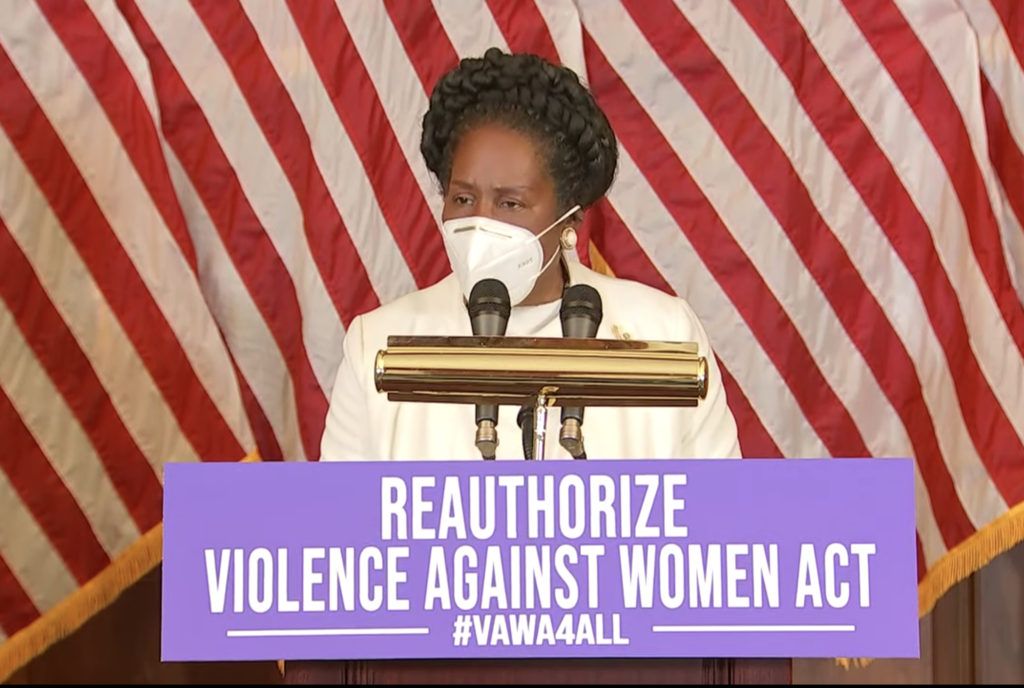 Equal Rights Amendment and Violence Against Women Act Pass the U.S. House