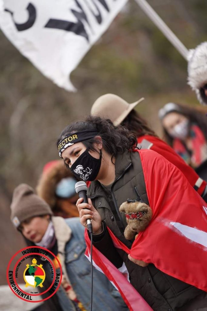 """""""This is Everything That We Have"""": Indigenous Women Lead the Movement to Stop Line 3 Taysha Martineau (The Fond Du Lac Band of Lake Superior Chippewa) Co-founder of Gitchigumi Scouts and Camp Migizi."""