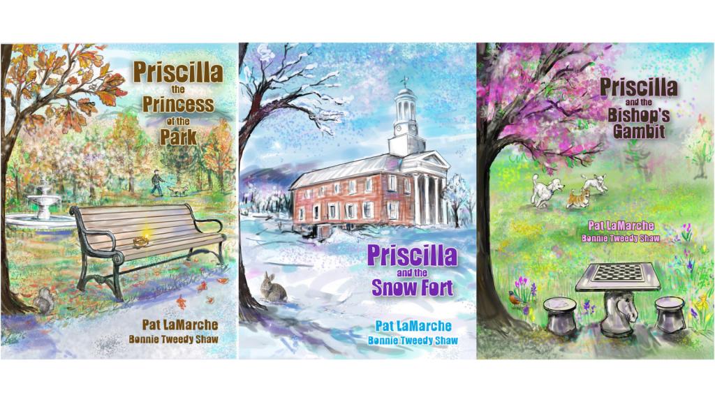 stigma-homeless-women-feminist-childrens-books-pat-lamarche-priscilla-the-princess-of-the-park